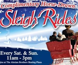 258.  Horse-Drawn Sleigh Rides in South Barrington