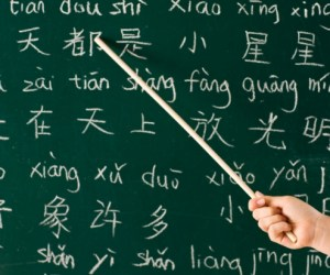 252.  Learn to Speak Chinese in Barrington's Schools