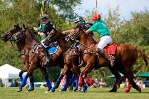 Barrington Hills Polo - Photo Courtesy of Megan West