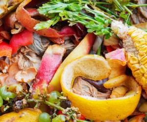 Post - Composting