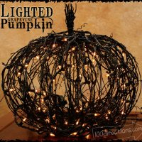 Thirteen No Sew Pumpkin Ideas