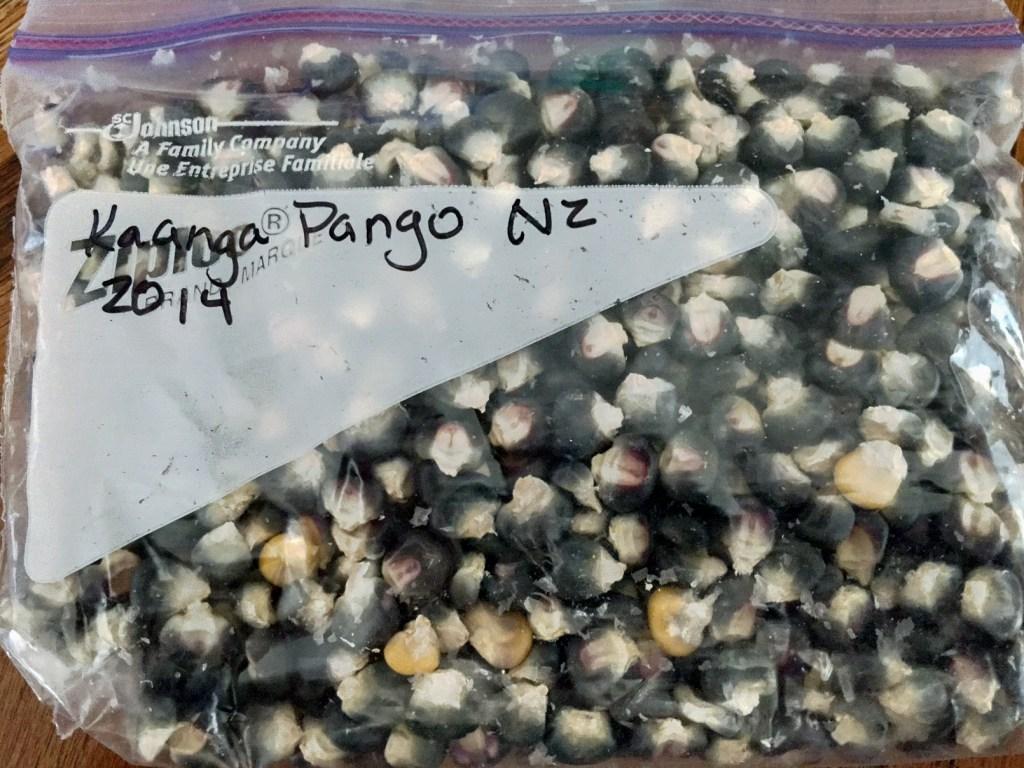Kaanga Pango Corn