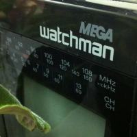 Relic from the past: Sony Mega Watchman