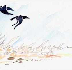 "Calligraphic Blackbirds 10"" x 7"""