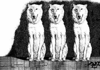 """3 Wolves 14"""" x 10"""""""