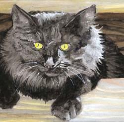 """Winnifred Cat 10"""" x 7"""""""