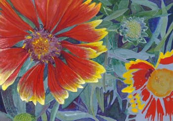 """Painted Daisies 10"""" x 7"""""""