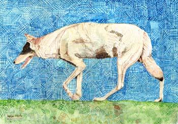 """Bosque Coyote #1 18"""" x 12"""
