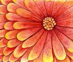 """Orange Flower 10"""" x 6"""""""