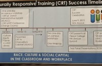 TImeline for Training in Culturally Responsive Teaching at LA Harbor College