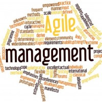 agile marketing management
