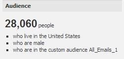custom audience refine