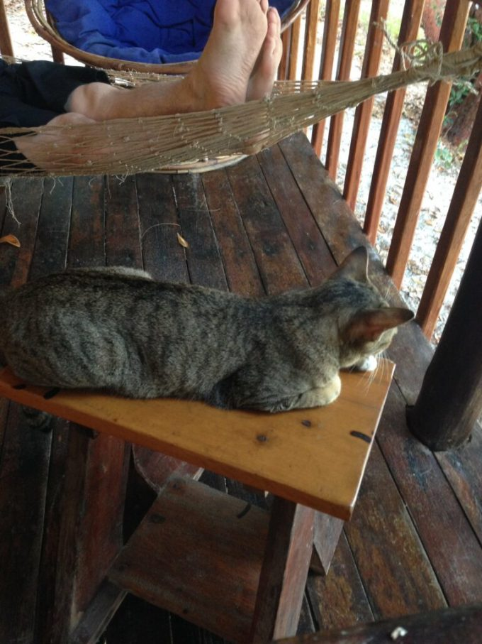 Koh Rong Cambodia Part One: 3ten.ca