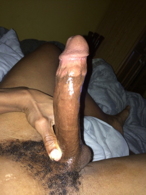 solo big hard black cock