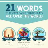 21 Words to Describe Nature from Cultures all over the World