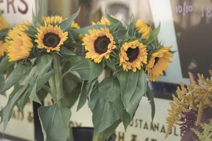 sunflowers at bi-rite