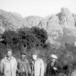 Ajjacio Corsica-Knopp-native-Lawver-native
