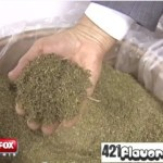 The Government Grows Crappy Pot (video)
