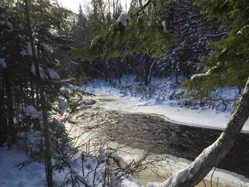 river dobson
