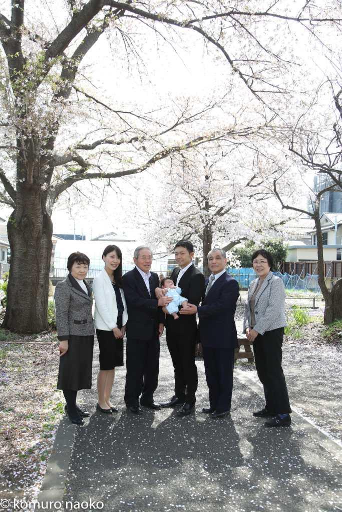 お宮参り家族写真桜の下