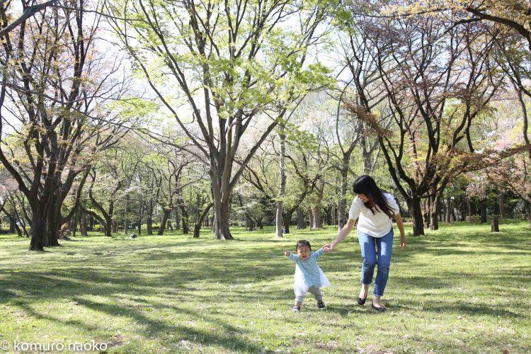 こむの木家族写真小金井公園桜