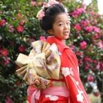 日吉神社七五三出張撮影写真7才