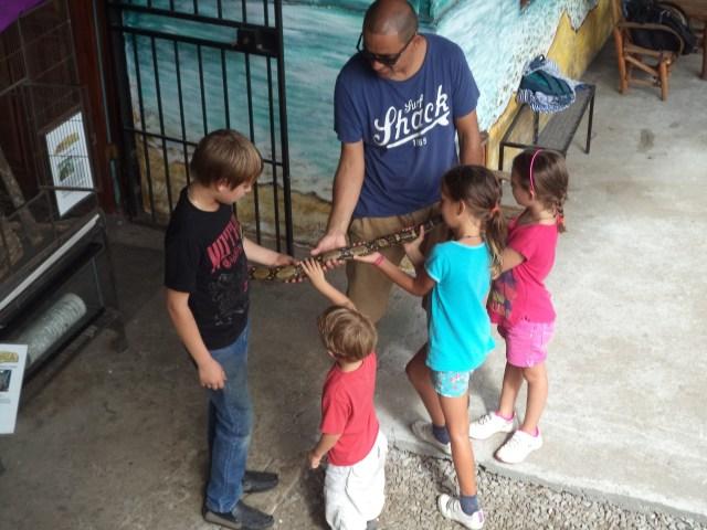 5onthego, Boquete, Jungla, Panama