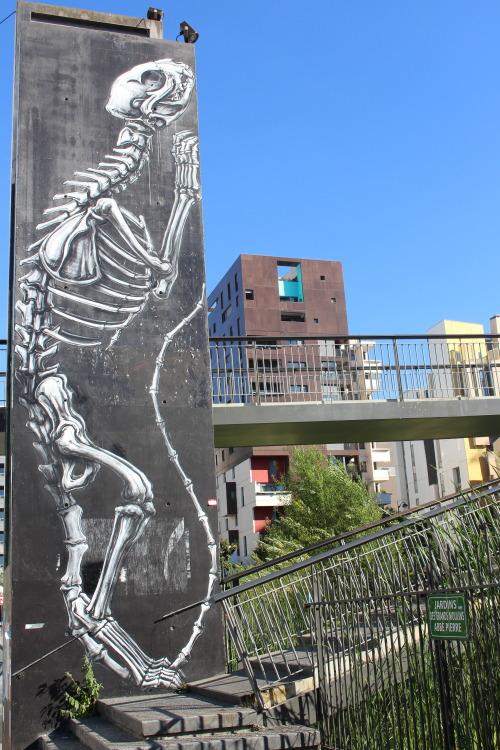 bfstreetwalls:  Mural by @roaweb in Paris 13th district. Fresque de Roa dans le 13ème arrondissement de Paris.
