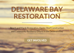 New website managed by the American Littoral Society and Conserve Wildlife Foundation featuring the ongoing habitat restoration work on the Delaware Bay.