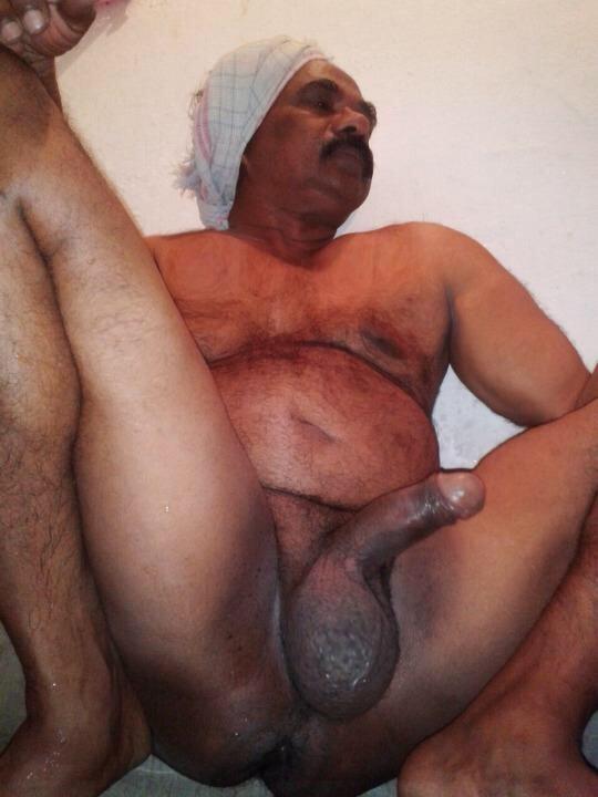 indian bears tumblr