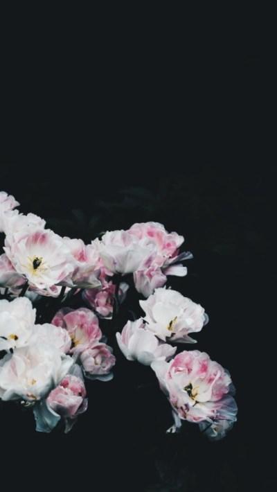 fade wallpaper | Tumblr