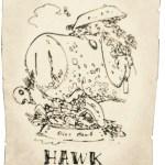 七つの大罪《ホークの手配書》