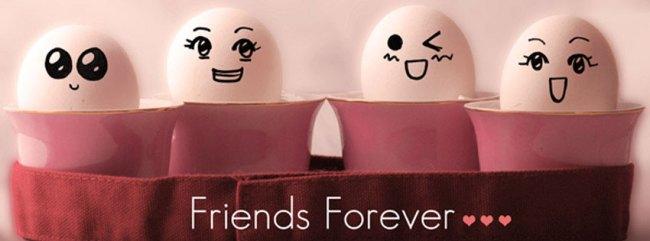 friends-forever-timeline-co