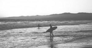 surf uidu