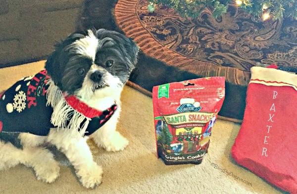 Treat your pets like family by giving them Blue Buffalo healthy treats from Petsmart this holiday season....
