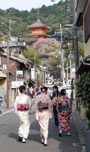 2016 Kimono Passport