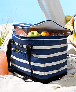 Cooler with water/food on the beach