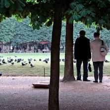 Tuileries 8
