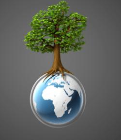 Sustainable School Plan for Dubai Eco Friendly Community