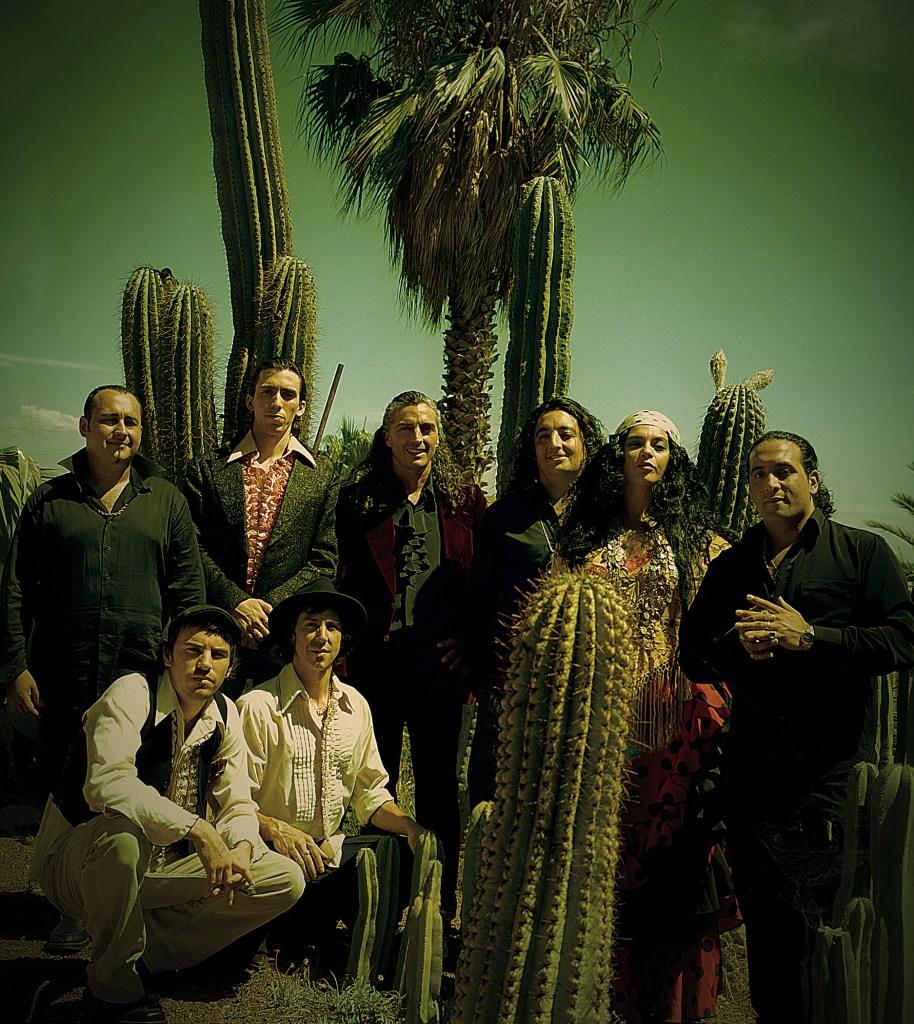 odb.cactus