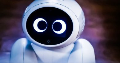 Domgy: Pet Robot and IoT Virtual Assistant in One