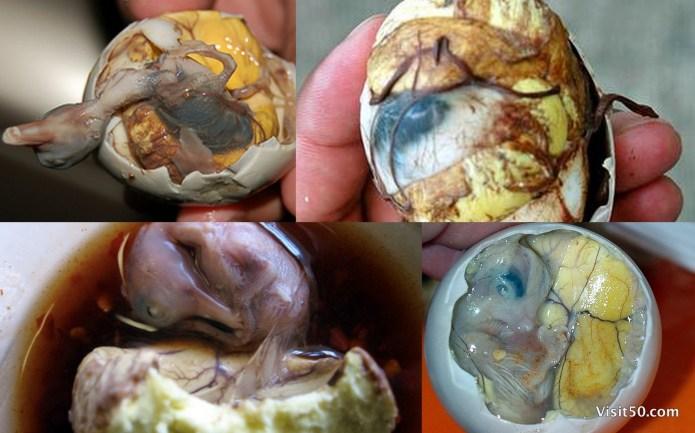 Balut - Duck Fetus - Visit50.com