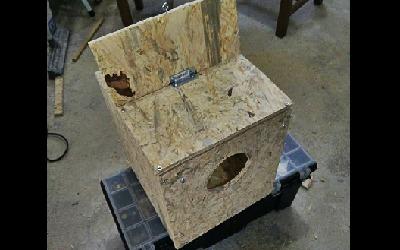 Fabriquer un nid pour perruches en 5 étapes