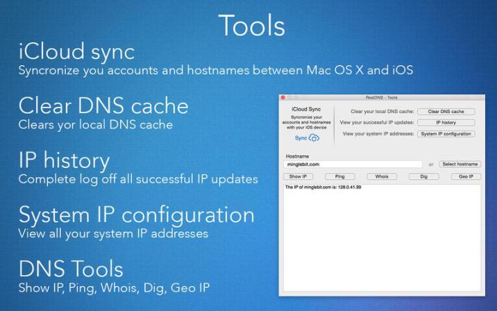 4_RealDNS_Dynamic_DNS_update_client.jpg