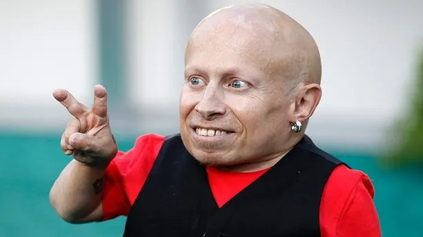Verne Troyer, Mini-Me in 'Austin Powers' movies, is dead at 49, spokesperson confirms | Fox News