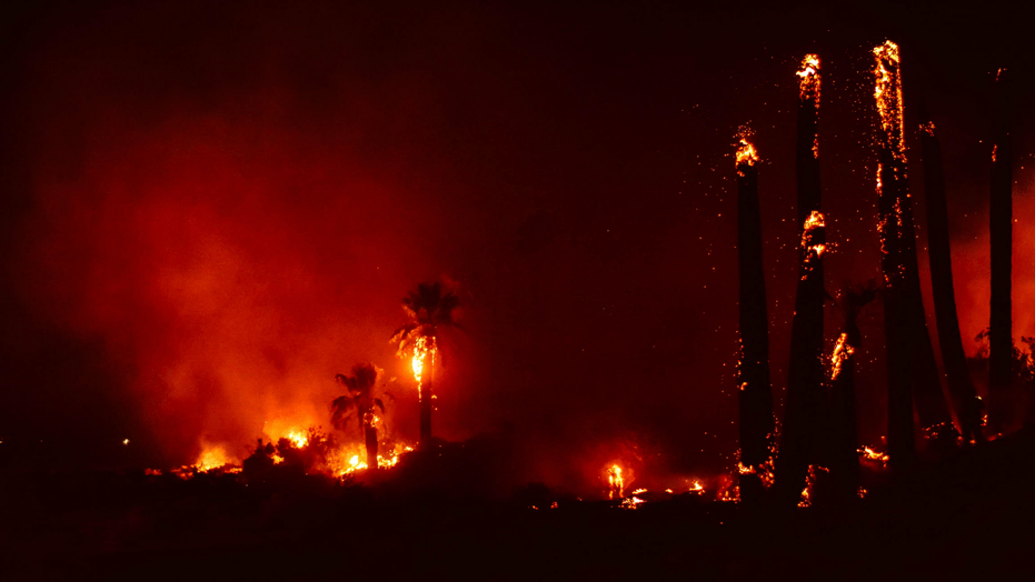 Joshua Tree fire burns landmark  arson suspected  officials say     A fire broke out at Joshua Tree National Park in California Monday night   which officials