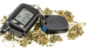 "Is ""I Smell Marijuana"" Probable Cause To Search Your Car?"