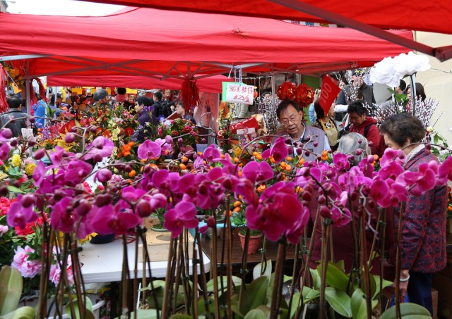 Chinese New Year Flower Fair