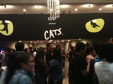 cats-show2