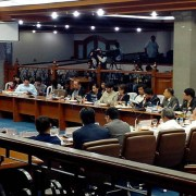 senate hearing cybercrime bills